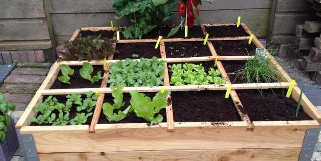 Vierkante Meter Tuin : De vierkante meter tuin een praktische lezing stadse boeren oss